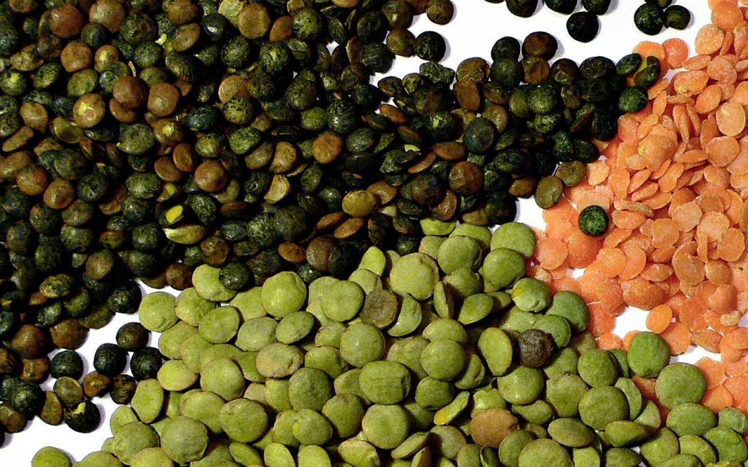 wighteasyweigh-lentils